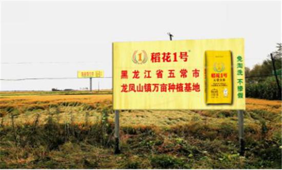 香飘全场!稻花1号五常大米亮相郑州,全国500位厨师纷纷点赞